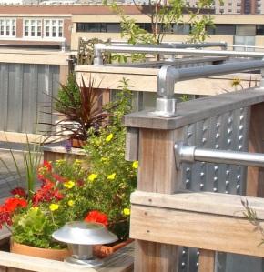 IPE Brazilian hardwood deck with galvanized steel railing