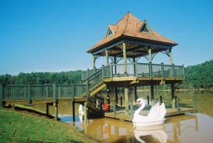 A lakeside gazebo with the grace of the swan