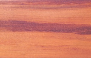 beautiful_tigerwood_picture_lr